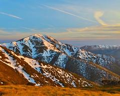 Mt Feathertop (co2friendly) Tags: mt australia alpine 1922 feathertop metres