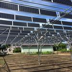 ソーラーシェアリング回転式架台システムの写真