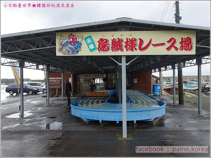 風間浦村 下風呂温泉 賽烏賊 賽魷魚 (21).JPG
