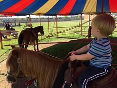 """Paul Rides a Pony with Daddy • <a style=""""font-size:0.8em;"""" href=""""http://www.flickr.com/photos/109120354@N07/22597688073/"""" target=""""_blank"""">View on Flickr</a>"""