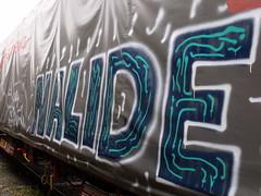 nalide (keeskia) Tags: france st train alpes wagon graffiti tag rails graff fret etienne loire voie ferre graffeur sncf rhone tagger bach saint nalide
