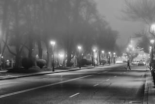 Calles invadidas de niebla [EXPLORE]