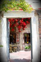 Puerta griega (Manu Varela - Fotografía Aeronáutica y algo más) Tags: puerta door grecia santorini fira thira flores rojo colores red antiguo madera piedra greek islas griegas egeo sea mar