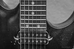 IMG_5640-2 (shanecotee) Tags: electric guitar strings pickups details macro ibanez ltd esp