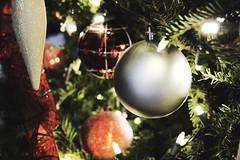 Festivities (Acqua di Gioia) Tags: christmas tree christmastree light lights winter color beautiful green holiday festive