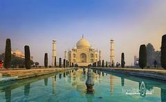 Taj Mahal (Albert Photo) Tags: tajmahal india asia yamunariver architect architectural reflection shahjahan