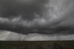 California thunderstorm (trifeman) Tags: 2017 january winter thunderstorm rain storm california sacramento rural clouds canon 7d canon7dmarkii tokina tokina1116mm
