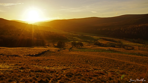 Sunrise in Royal Deeside