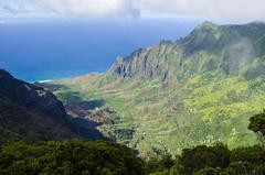 Kalalau Valley from Pihea Trail (TrekkinD-47) Tags: kalalauvalley napalicoast hanapepe hawaii unitedstates