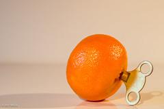 A Clockwork Orange! (BGDL) Tags: lightroomcc nikond7000 bgdl high5~365 afsmicronikkor40mm128g satsuma key aclockworkorange 7daysofshooting week27 abooktitle macromonday