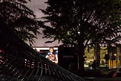 PRADA, Meieki 4-chome, Nagoya (kinpi3) Tags: 名古屋 japan nagoya night cityscape eosm ef200mm