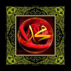 Scent of Roses (mfuata) Tags: rose gül scent koku sevgi love feith inanç spiritual manevi