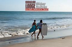 Manglar Lodge⠀ El Palmar San Carlos , Panama⠀ (507) 345-4014⠀ For reservations visit our website⠀ http://ift.tt/2jeKUaO ⠀ You can find us on #WAZE search Manglar Lodge⠀ ⠀ #ManglarLodge #ElPalmar #panama #sancarlos #beach #cocle #roadtrip #surfing #travel (manglarlodge) Tags: ifttt instagram manglarlodge elpalmar hotel fun