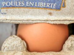 Hens free - Vive la liberté - MACRO MONDAYS - THEME: EGG (BLEUnord) Tags: oeuf egg macro macromondays macrophotography macrophotographie mondays hmm
