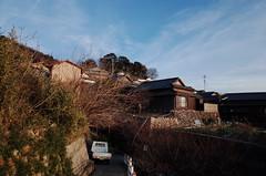 小島黃昏 (TKBou) Tags: japan kagawa ogisima 日本 男木島 香川県 scenery 風景 gr2 photographer フォトグラファー instalike instagood 写真好きな人と繋がりたい ファインダー越しの私の世界 landscape dusk