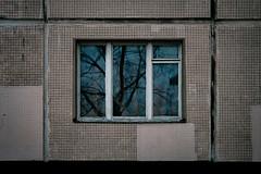 (Иван Простов) Tags: window reflection trees sureal