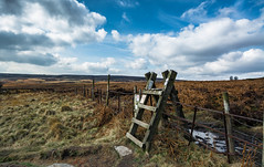 Ladder Stile.... (johngregory250666) Tags: uk derbyshire rural nature british countryside camera lens green yellow orange stone nikon nikkor hiking walking lines clouds sky blue moss lichen out brook glow grass imagesofengland amazing sunlight water light sun outdoor grassland field landscape hill trees plant serene moors ridge great national park mountain moor moorland dale new d5200 rock formation rays edge heather flower tor world pass outside cloud temperature view strange peak district stanage causeway long england north