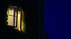 Window in the blue hour (Per Jensen) Tags: window copenhagen august bluehour cph vindue 2015 bltime