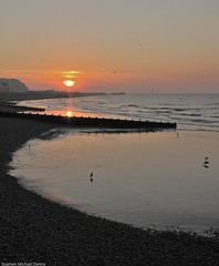 6am at Hastings (Steve Denny) Tags: morning sea sun seagulls seascape beach silhouette sunrise landscape dawn seaside hastings englishchannel breakwater canonpowershotg10 stephenmichaeldenny