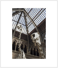 Skeletal 1 (Pictures from the Ghost Garden) Tags: horse history architecture buildings nikon interiors natural 28mm oxford giraffe skeletons museums naturalhistorymuseum oxfordshire voigtlnder colorskopar d7100