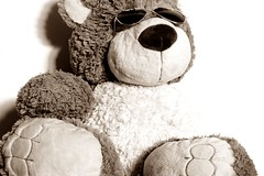 Teddybear shooting (Derya Elmas) Tags: ted sunglasses cool photoshooting stofftier liebling einfarbig