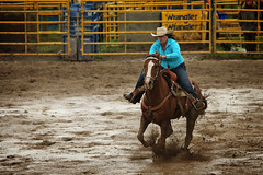 CalgaryPoliceRodeo2015-BarrelRacing-436 (calgarypolicerodeophotos) Tags: horse calgary race bareback sheep barrel police bull racing poker rodeo calf bullriding chute mutton saddle bronc steerwrestling barrelracing saddlebronc cpra chutedogging