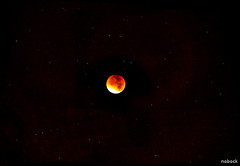 La lune rouge - The red moon