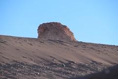 IMG_1225 (gianfranco.simoni) Tags: lagunachaxa salardetara parcodelflamenco cileperuset20154valledellaluna