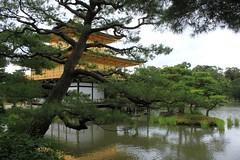 Kinkaku-ji Temple (demeeschter) Tags: world park building heritage japan architecture garden temple pond kyoto asia outdoor religion unesco historical pavilion kinkakuji