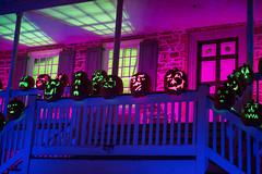 KMM_3003 (K_Marsh) Tags: jackolantern pumpkins westchestercounty crotononhudson thegreatjackolanternblaze