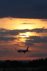 Final Arrival (IndiaEcho Photography) Tags: sunset england sun london clouds last canon eos airport heathrow aircraft aviation aeroplane civil final airbus british ba arrival airways middlesex hounslow airliner lhr airfield a320 baw egll 1000d geuyp
