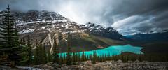 Peyto Lake ([v] style + imagery) Tags: canada ooak alberta bluelake banffnationalpark peytolake bowlake canadianrockies lakemoraine glacierfedlake