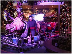 DSCI8468_ShiftN (aad.born) Tags: christmas xmas weihnachten navidad noel  tuin engel nol natale  kerstmis kerstboom kerst boi kerststal  kribbe versiering kerstshow  kerstversiering kerstballen kersfees kerstdecoratie tuincentrum kerstengel  attributen kerstkind kerstgroep aadborn nativitatis