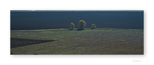 "Allons voir si la terre est ronde • <a style=""font-size:0.8em;"" href=""http://www.flickr.com/photos/88042144@N05/22936525854/"" target=""_blank"">View on Flickr</a>"