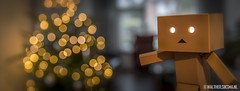 WS20151222_4279 (Walther Siksma) Tags: christmas xmas light weihnachten bokeh kerst danbo revoltech danboard