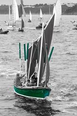 old sailing (sapiens5) Tags: de noir  pentax vert brest kr et blanc navigation couleur rame voilier vieux arrive 2015 flotille grement quipage lhermione slective