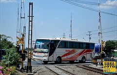 SAM_0848 (Irsa Hanif. P) Tags: rail railways hino setra klaten murnijaya bismania adiputro indonesianbus sukafotobis