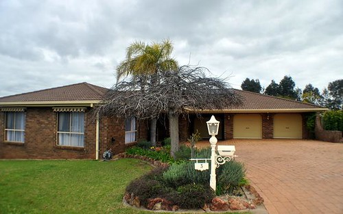 3 Anderson Ave, Young NSW 2594