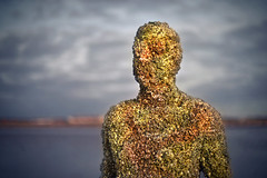 Another place (Mike McCusker ARPS) Tags: crosby beach an antony gormley another place sculpture art installation sea barnacles