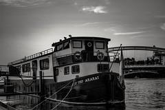 Boat confluence (Magictof) Tags: lyon bateau boat péniche monochrone soirée canon paysage water eau bridge pont confluence
