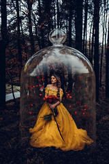 Tale as old as time (Adam Bird Photography) Tags: adambirdphotography adambird beautyandthebeast emmawatson yellow dress gown woods fairytale narrative story princess rose petals jar glass flickr explore belle disney