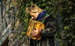 un musicien a Montmartre  ... (miriam ulivi) Tags: miriamulivi nikond7200 france paris parigi montmartre musicista musicien fisarmonica musicienderue accordéon accordion street