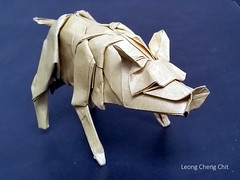 Wild Boar (Leong, Cheng Chit) Tags: wild boar swine pig origami