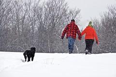 Ending 2016 right. (Jamie McCaffrey) Tags: cold country dog fuji handinhand love ontario purdy snow snowfall snowflakes snowy walk winter xt1 candid lovebirds anniversary outdoor myontario