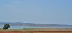 Nugu Reservoir, Karnataka (Smevin Paul) Tags: kabini bandipur trip february 2017 nugureservoir karnataka river smevin paul smevinpaul smevinsphotography smevinpaulphotography smevinsphotos smevinsphotographs smevinpictures smevinspictures thrisookaran passion photography