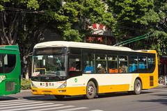 这是电车吗?/Is This a Trolleybus? (KAMEERU) Tags:
