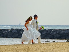 ... and they are off! (peggyhr) Tags: peggyhr brideandgroom beach destinationwedding pacificocean hawaii candid dsc05177a heartawards thegalaxy level1peaceawards sailboat thegalaxyhalloffame