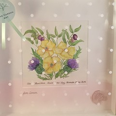 Name illustration Poppy, Thistle & Olives #janecarsonart (janecarson3) Tags: dublin irish thistle olive poppy flowers languageofflowers watercolour janecarsonart