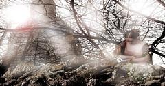 Architecture lights (Poli Maurizio) Tags: sony sonydsch200 disegno art abstract painting sculpture museum gallery virtual artist master famous canvas painter collection drawing impressionism naturalism renaissance expressionism realism baroque sketch garden portrait autumn flower light nature sky spring summer indoor travel water woman yellow blue black white color movement figure macro photo object fine unlimited still life mattepainting environment fantasy fantastic facebook twitter linkedin pinterest instagram tumblr outdoor atmosferic watercolor technique surrealism digitalart 3dweddingpartyfamilytravelfriendsjapanvacationlondonbeachcaliforniabirthdaytripnycsummernatureitalyfrancemeparisartflowerssanfranciscoeuropechinaflowernewyorkwaterpeoplemusiccameraphone 3daustraliachristmasusaskygermanynewcanadanightcatholidayparkbwdogfoodsnowbabysunsetcitychicagospaintaiwanjulybluetokyoenglandmexicowinterportraitgreenred 3dpolimaurizioartworkredfunindiaarchitecturegardenmacrospringthailandukseattlefestivalconcertcanonhouseberlinhawaiistreetlakezoofloridajunemaywhitevancouverkidstreecloudstorontobarcelonageotaggedhome 3dbwbwdigitalseadaytexasscotlandcarlighthalloweencampingchurchanimalstreeswashingtonrivernikonaprilbostongirlirelandgraffitiamsterdamrocklandscapeblackandwhitecatsnewyorkcitysanromeroadtripurbanhoneymoonocean 3dwatercolorsnewzealandmarchblackmuseumyorkhikingislandmountainsyellowsydneysunhongkongshowgraduationcolorfilmmountainanimallosangelesschoolmoblogphotodogs 3dartdesigndisegnosiciliacalabriabasilicatacampaniamarcheabruzzomoliselaziotoscanaemiliaromagnalombardiavenetofriuliveneziagiuliapiemontevalledaostaliguriatrentinoaltoadigepuglia 3dlandscapepaesaggiolunasolemarenuvolecittàtramontoalbamontagnecollinenebbialuceautomobilearredamentointerniesterninaturamortacieloragazzadonnauomobambinofruttabarca 3dcanigattirinascimentomodelbarocconaturalismomattepaintingfuturismoastrattismocubismosurrealismorealismoiperealismoclassicismorococomanierismoromanticismoimpres