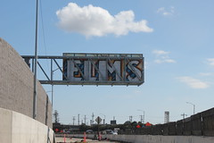 Elms (nobammermane) Tags: elms bth